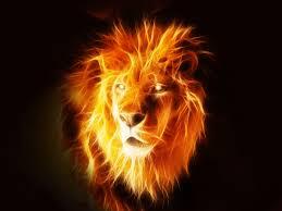 hot lion